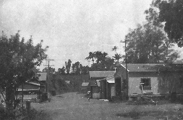 Turning right from the house and huts this was your view looking west along Main Street.  In the distance, on the right, was the radio station gate. The road carried on past the Niuean camp (the western most building in the Google Earth view) and the stockyards to another stock grazing area.
