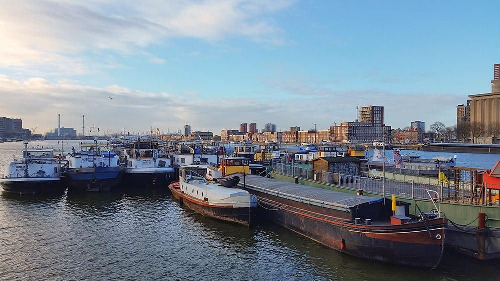 Portul din Rotterdam