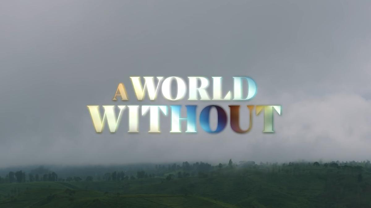 poster film A World Without Netflix