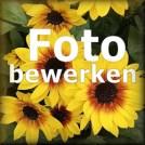 knop voor fotoeffecten