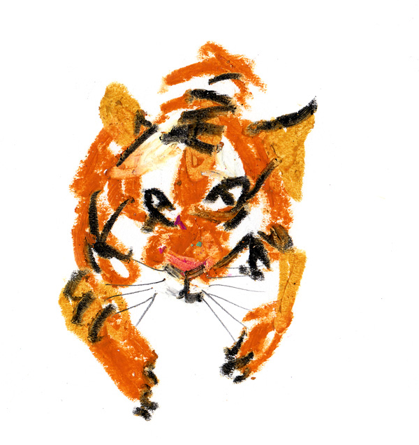 tigre600