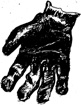 Stella's Glove, an illustration by M.K. Noble