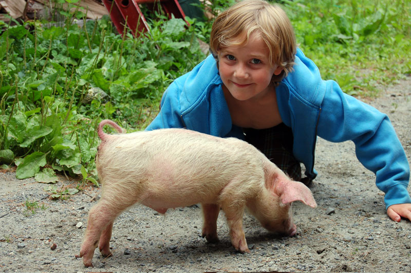 Dylan-with-piglet