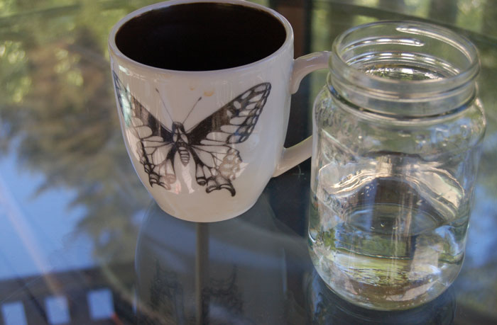 Laura Zindel Butterfly Mug and Water