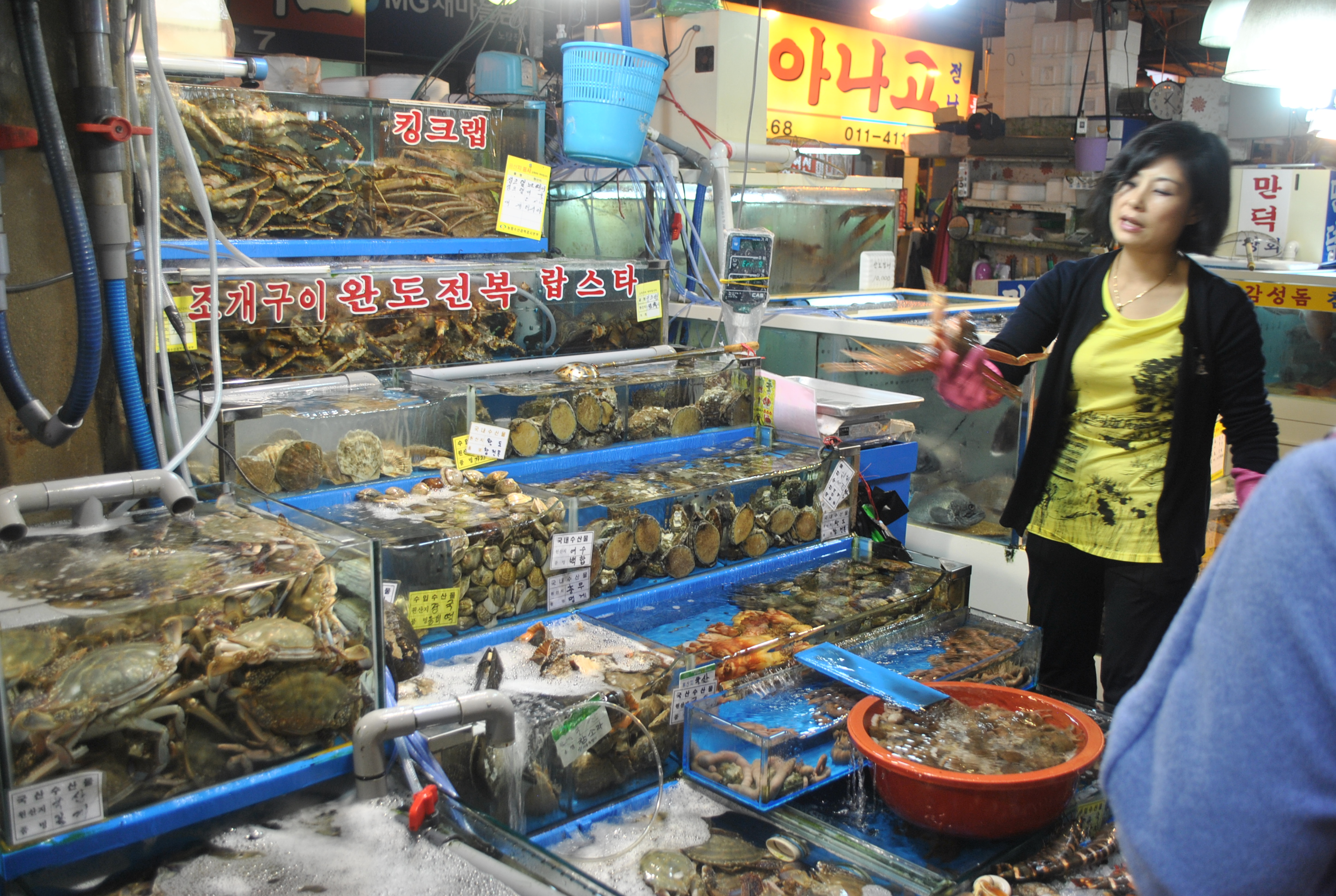 If the day you were born is coming up, what better way to enjoy it than with free birthday food? Noryangjin Fish Market (Seoul, South Korea