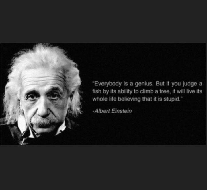 Einstein...fish square
