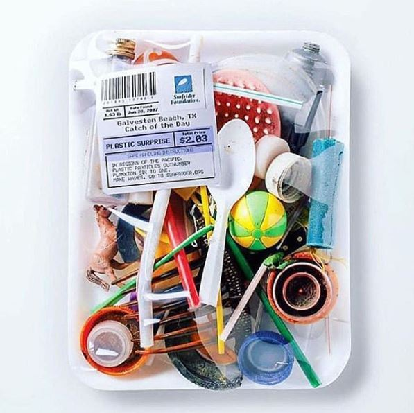 INSTA Plastics in tray