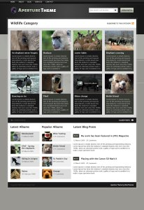 Aperture Category Archive Template