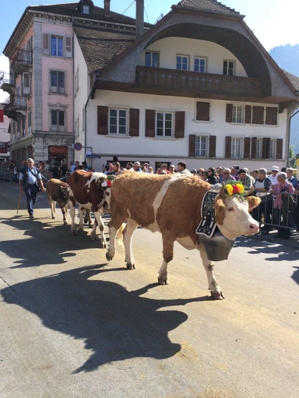 Parade La Salpe De Charmey Swiss Family Robinson