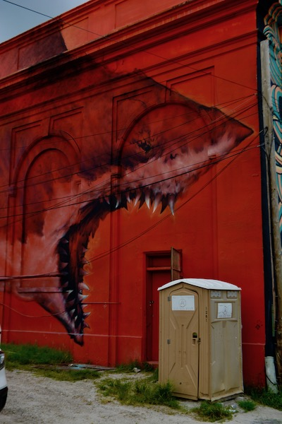 St Pete Murals - Shark Toof - St petersburg Florida