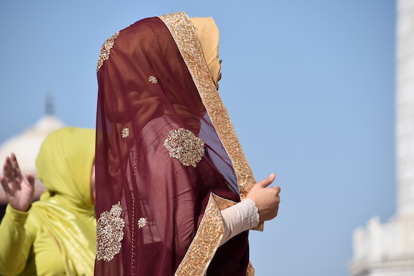 Mark and Chuck's Adventures - India trip - Indian Woman - Indian woman brown sari with gold embroidery - Taj Mahal - Agra