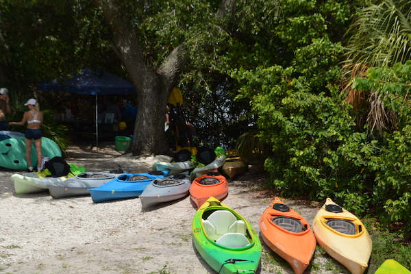 rental kayaks sitting on the sand at Weedon Island Preserve