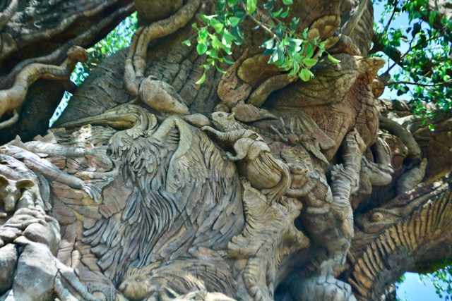 animal carvings in the tree of life at Disney's Animal Kingdom