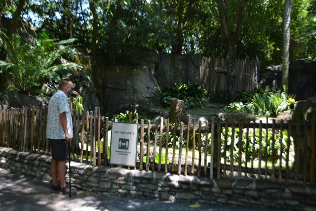 Enjoying animals in The Oasis at Disney's Animal Kingdom Theme Park