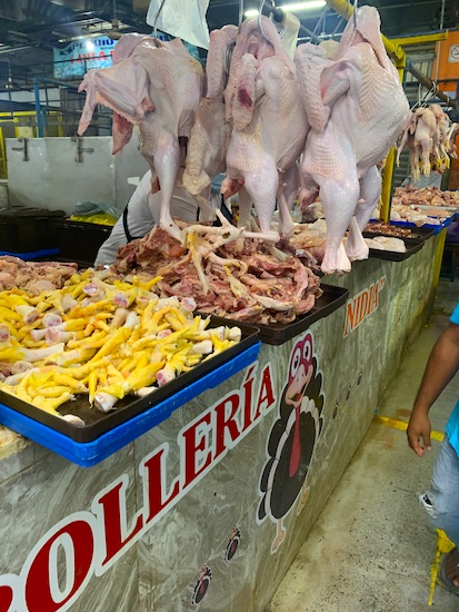 fresh turkeys in the Lucas de Galvez market in Merida Mexico