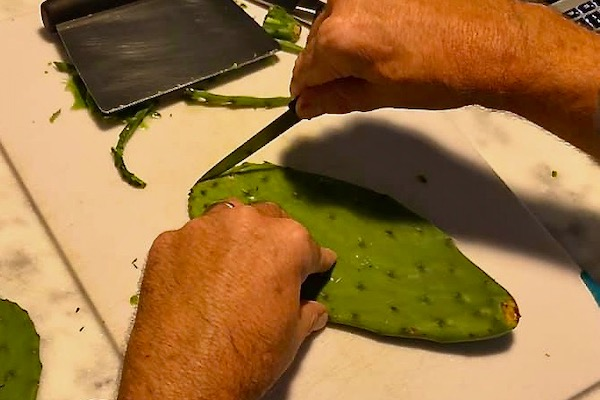 cleaning fresh Mexican nopales