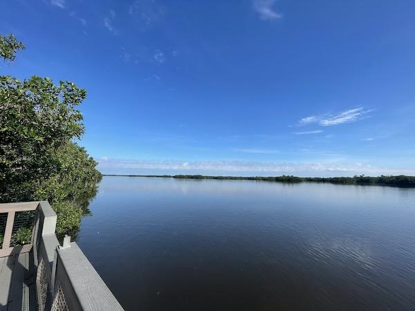 observation deck along the wildlife refuge's waterways