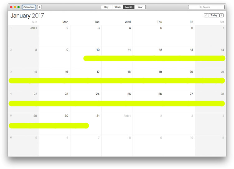 Calendar: January 2017
