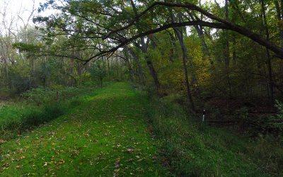 Bristol Woods County Park hiking trail, Bristol, Wisconsin