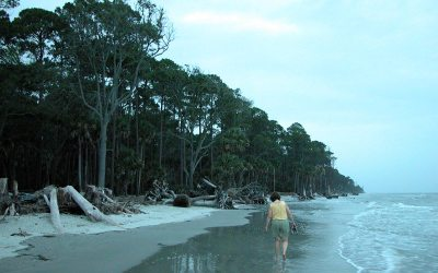 Hunting Island State Park beach at dusk