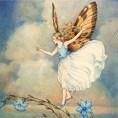 FairyInTheWind
