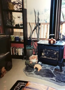 The shop radiates warmth and comfort