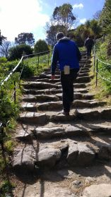 Pilgrims steps 2