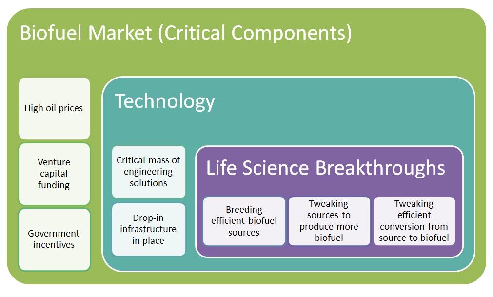 biofuel market analysis
