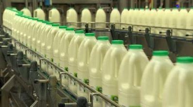 Dairy Crest milk business