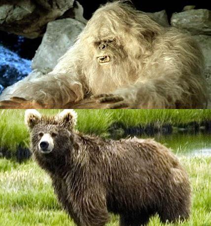 Yeti and Himalayan Brown Bear