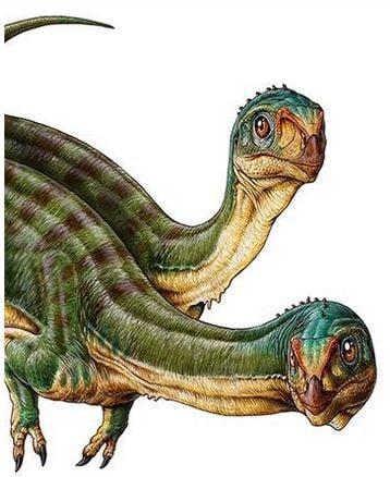 Chilesaurus diegosuarezi