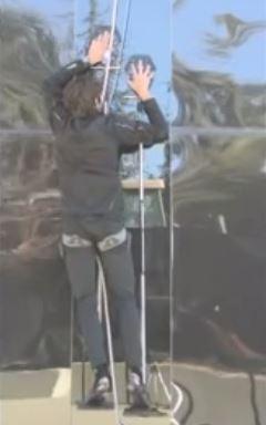 Hawkes climbing a wall