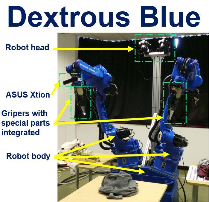 Dextrous Blue