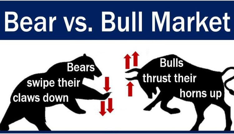 Bull market and bear market - image