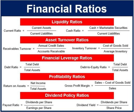 what are financial ratios definition and meaning
