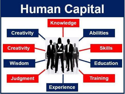 what is human capital? definition and meaning - market business news