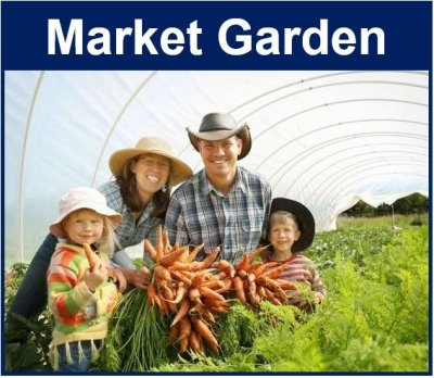 What Is A Market Garden Definition And Meaning Market Business News