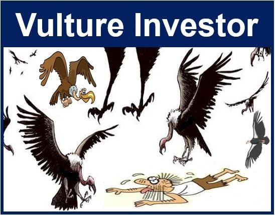 Vulture Investor