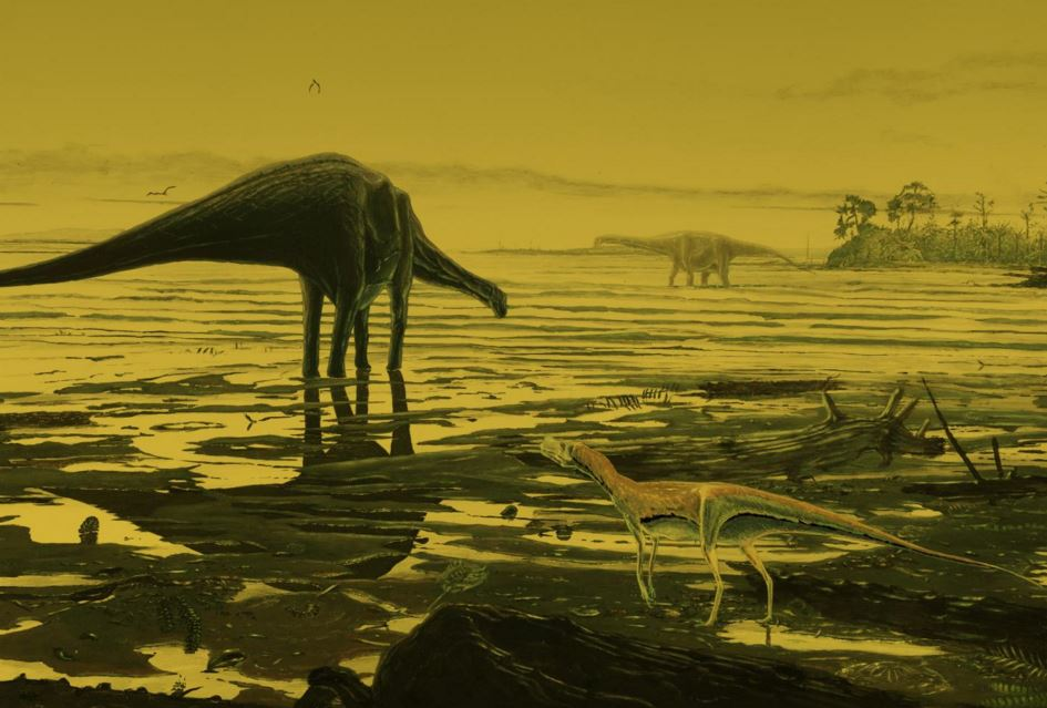 Sauropods Dinosaur footprints discovered in Isle of Skye