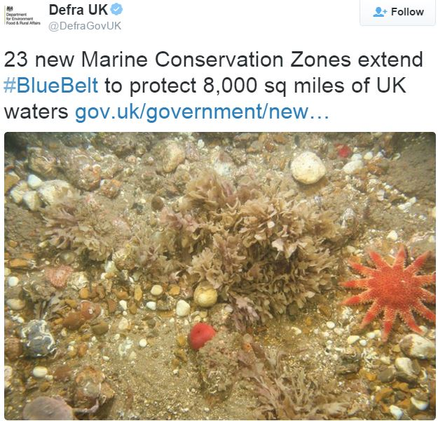 DEFRA announces new MCZs