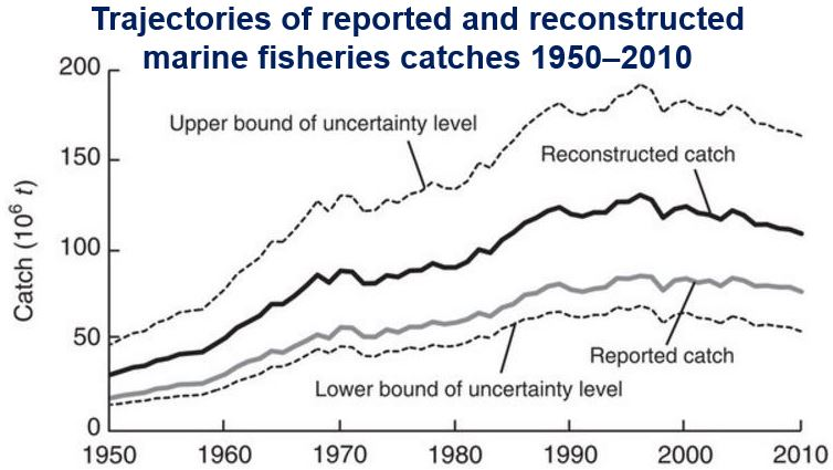 Fisheries catches 1950 to 2010