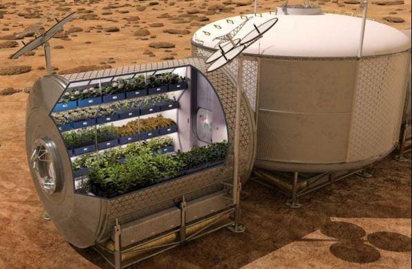 Garden in Mars