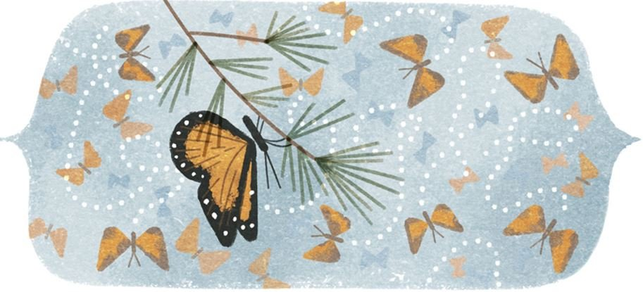 Mountain of Butterflies first Google Doodle of 2016