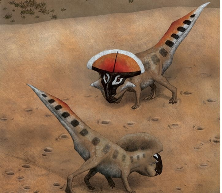 Protoceratops the sexiest were the horniest