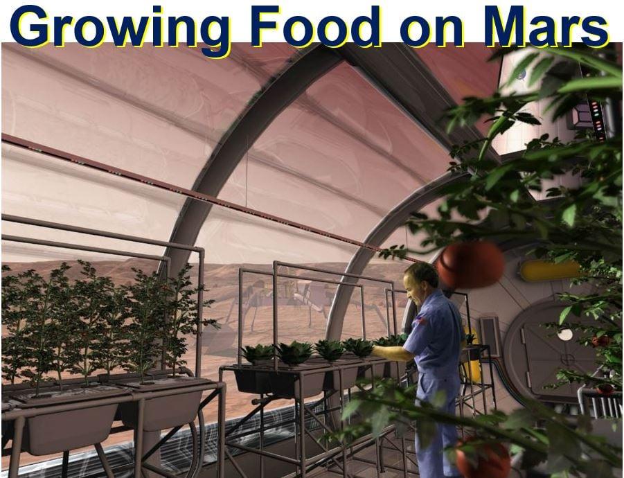 Growing food on Mars