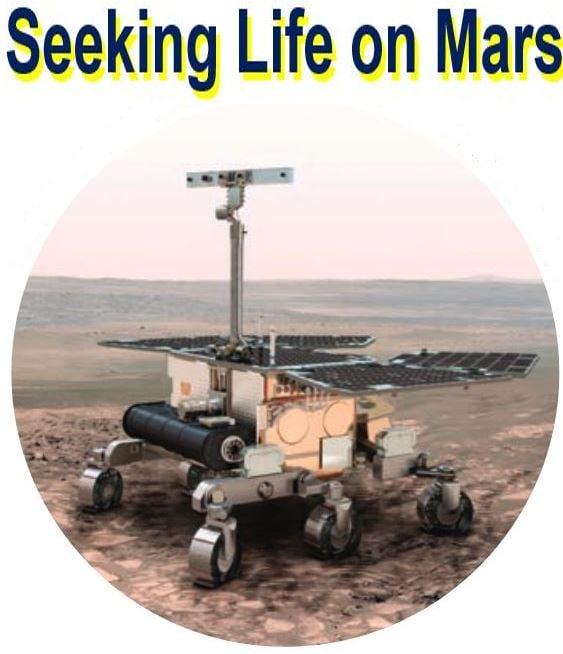 Seeking life on Mars