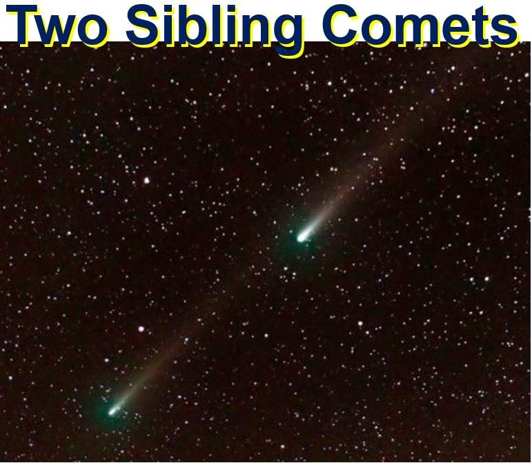Two sibling comets