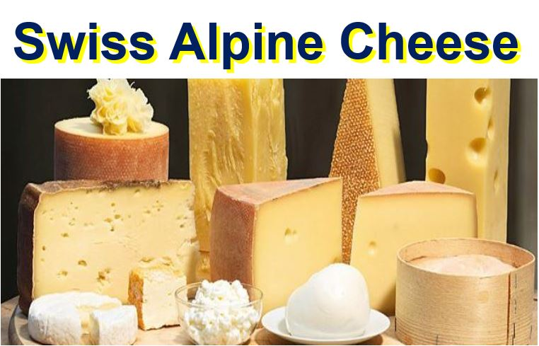 Swiss Alpine Cheese