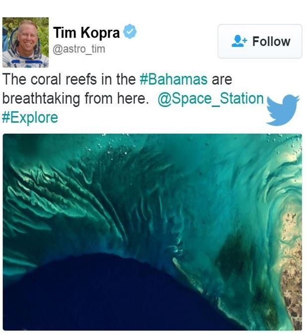 Tim Kopra image of Coral Reef The Bahamas
