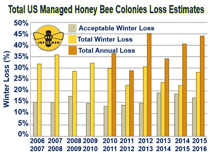 US honey bee loss estimates per year